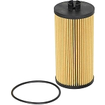 AFE Pro Guard D2 Oil Filter (Cartridge)