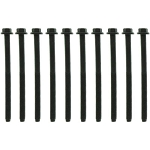 Mahle Cylinder Head Bolts